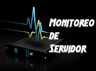 monitoreo regular de los servidores o hosting